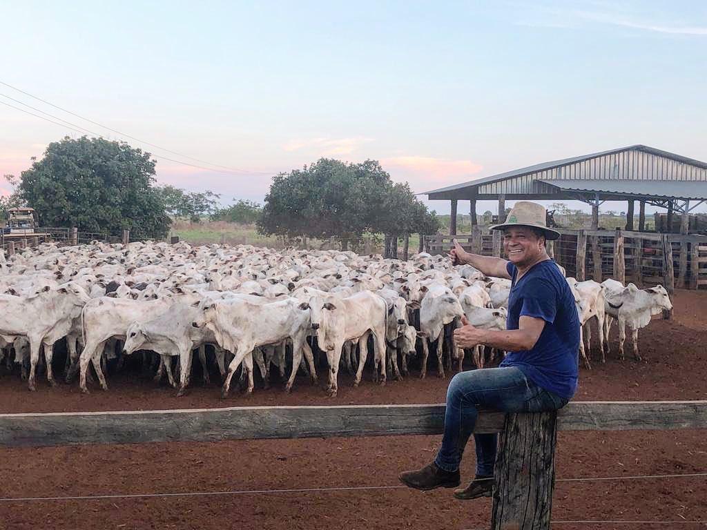 fazenda leonardo gado 1