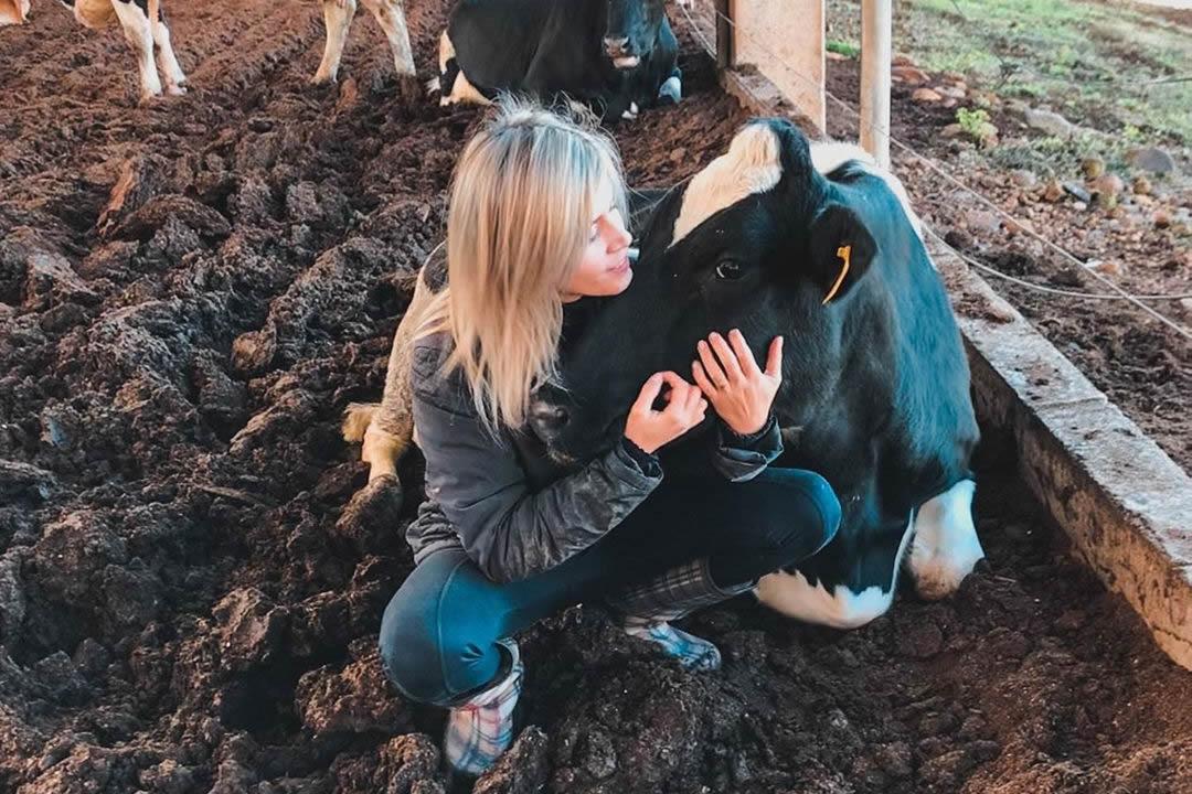 amor pela pecuaria leiteira