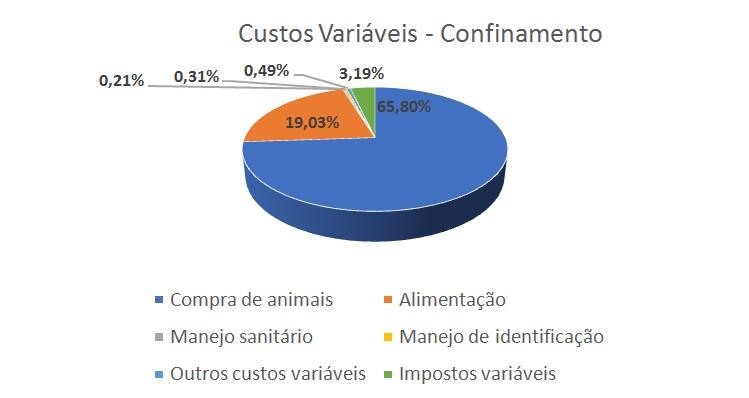 Minerthal2020-Confinamento-grafico