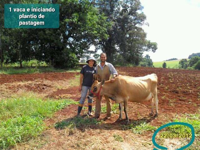 A implantação da pastagem foi o primeiro passo dado pelo casal na propriedade em Xanxerê. Foto: Arquivo da família