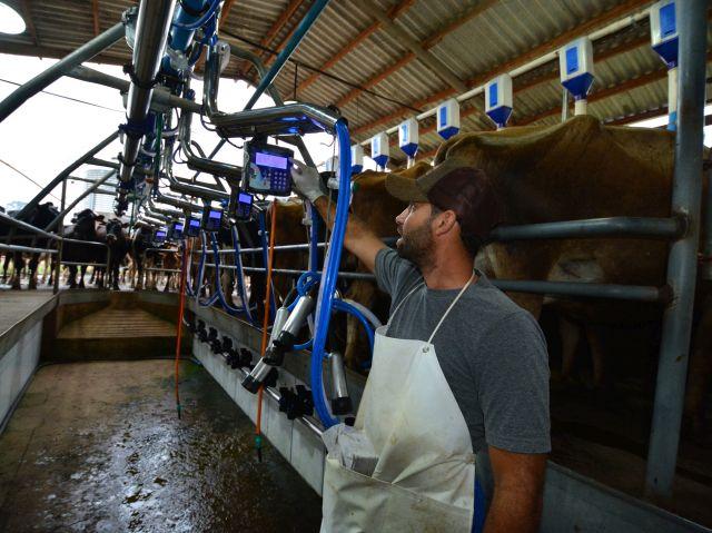 Ambiente é equipado com sistema de extração de ordenha e medição de leite. Foto: Aires Mariga