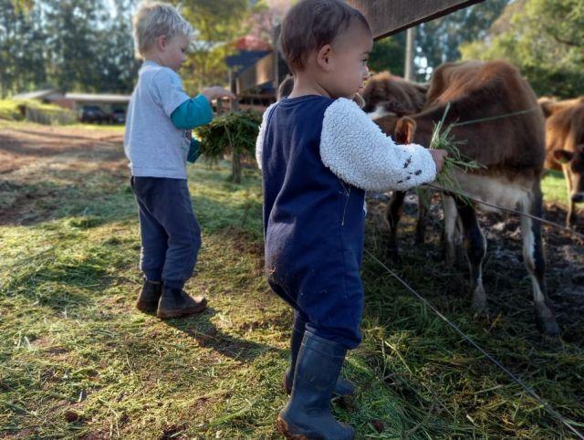 Os pequenos Valentin e Martín participam das atividades cotidianas da propriedade