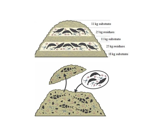 Figura 5 - Representação esquemática da montagem inicial das leiras (A) com recarga de carcaças de animais aquáticos (B). Fonte: Lopes (2020)