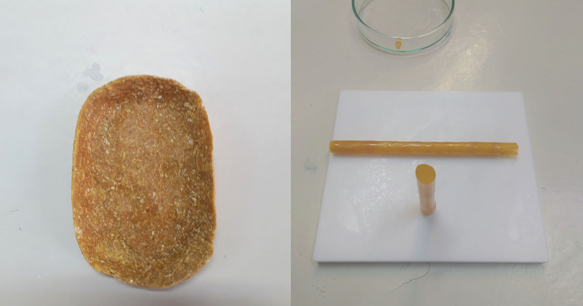 Saboneteira e canudo obtidos a partir da zeína extraída com a nova técnica da USP – Foto: Sérgio A. Yoshioka/Arquivo pessoal