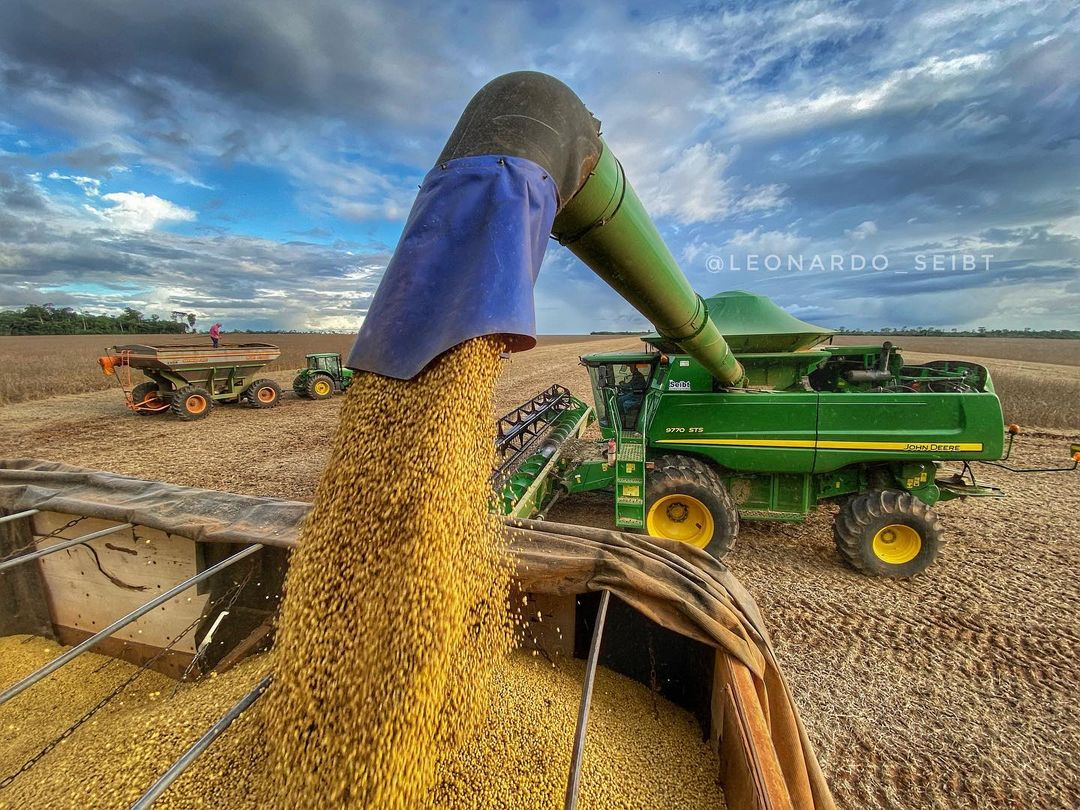 colheita da soja no brasil