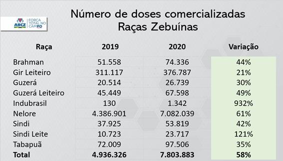 numero de dozes comercializadas das racas zebuinas