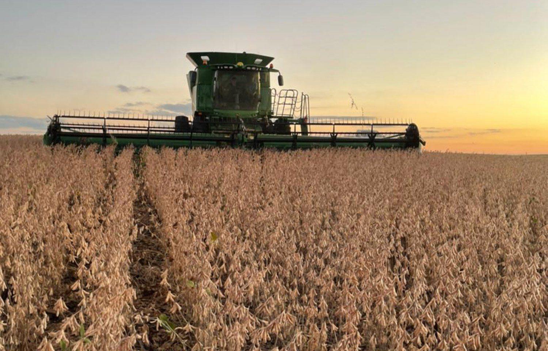 Custos na soja e milho sobem acima de 25% na próxima safra