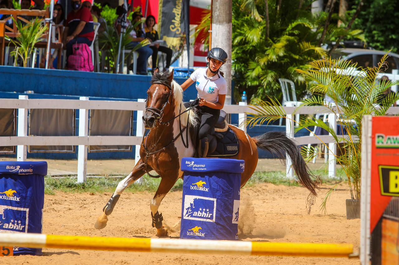Cavalo Árabe - salto e hipismo rural