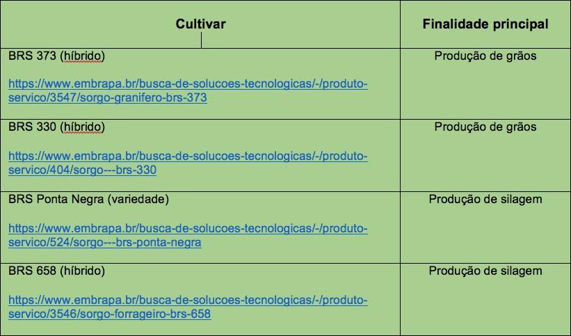 Cultivares da Embrapa indicadas para o Semiárido