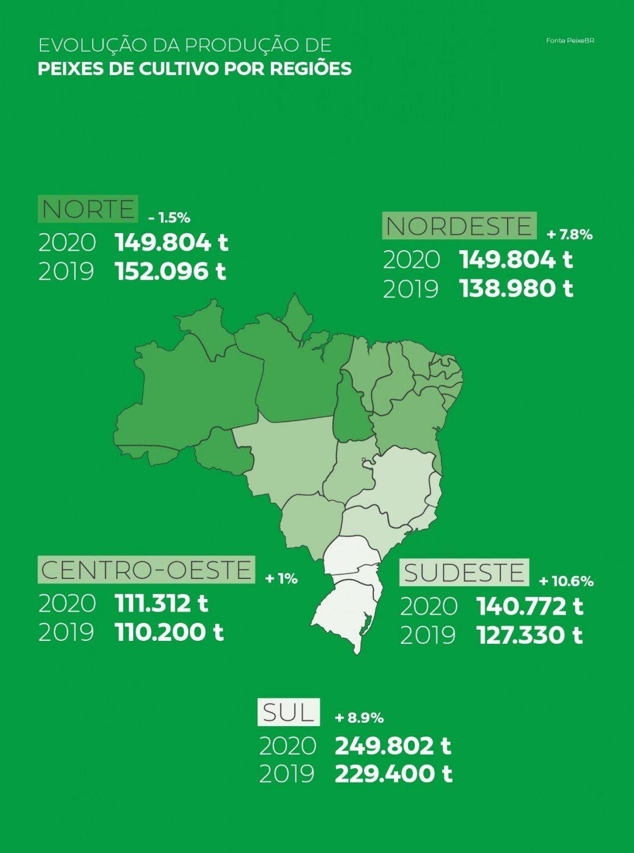 PeixeBR-Infografico-sul-lidera-producao-por-regioes-e-ja-representa-31.1-da-piscicultura-brasileira-foto-divulgacao