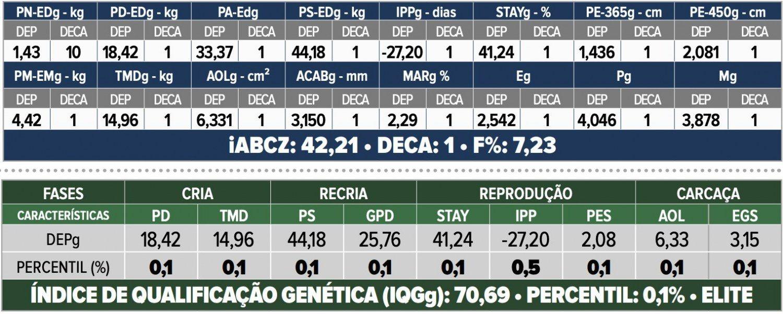 touro nelore F19 FIV da IPB -- IPB 6553 -avaliacao genetica