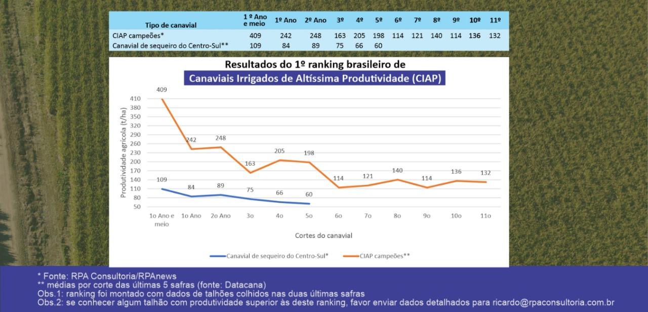 Canaviais Irrigados de Altíssima Produtividade (CIAP).