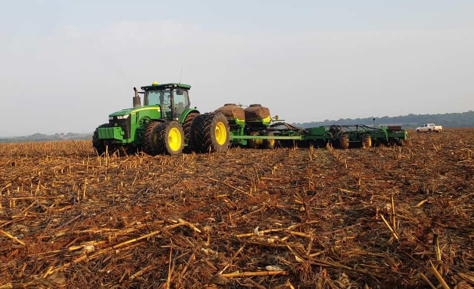 Gigante Bom Futuro inicia safra de soja em Mato Grosso