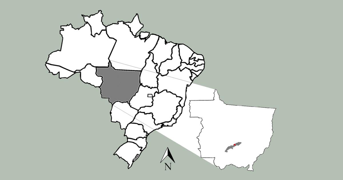 Imagem: mapa destacando o Estado do Mato grosso e o município de Rosário. Em vermelho, o ponto onde se encontra a área de estudo – Foto: Imagem extraída da tese do pesquisador