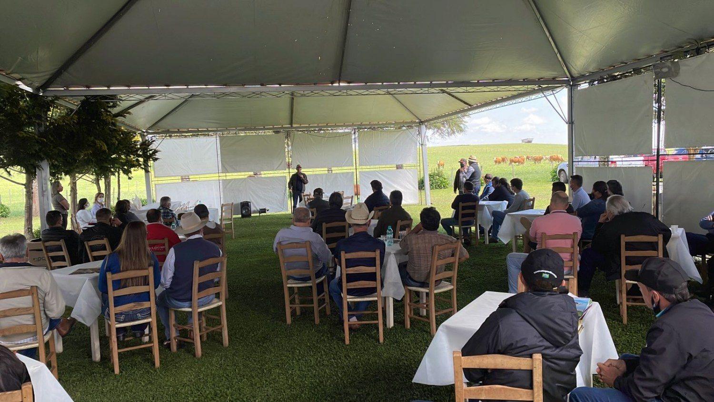 Santa Catarina fortalece seu grupo de selecionadores de Simental e Simbrasil